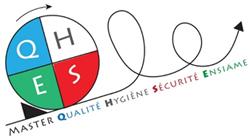 Master QHSE - Logo