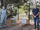 une première récolte de 10 kilos par ruche est espérée au printemps 2021 sur le centre universitaire de Cambrai